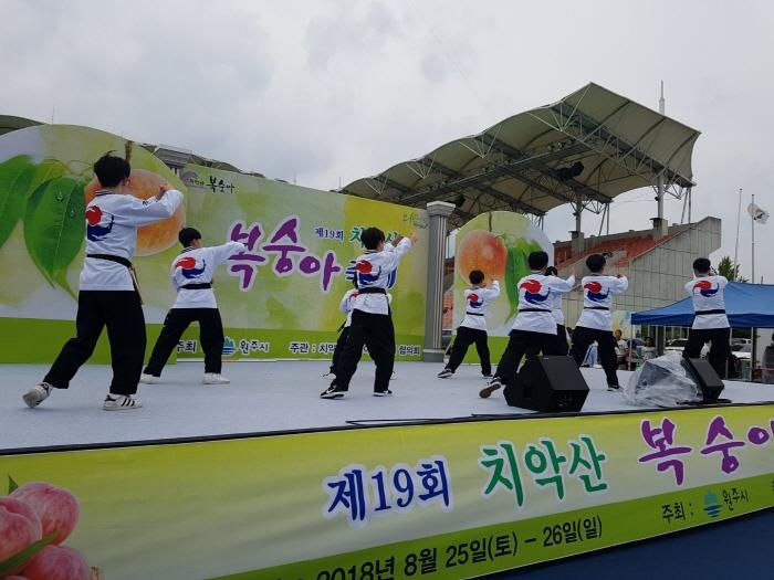 치악산 복숭아축제 2019