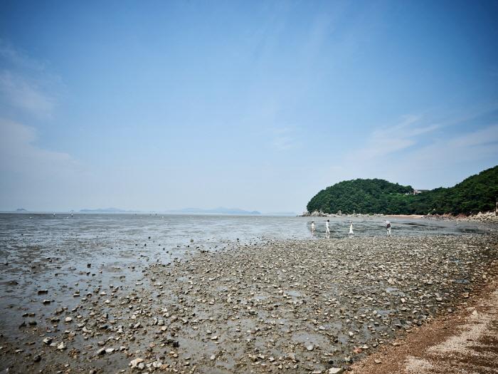 席毛島(석모도)
