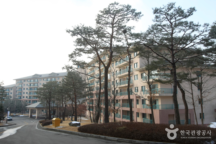 Hansol Oak Valley Resort (한솔오크밸리)