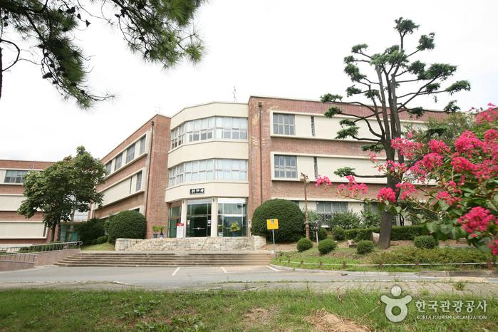 경북대학교박물관