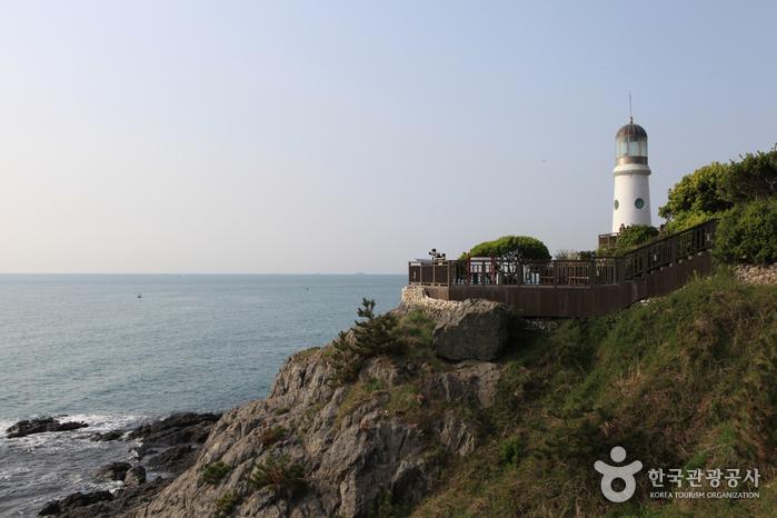 Остров Тонбэксом на Хэундэ (해운대 동백섬)5