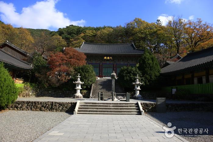 Hadong Ssanggyesa Temple (쌍계사(하동))
