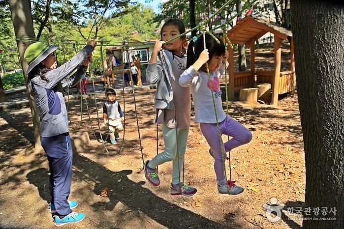 베짱이 유아숲체험장에서 노는 아이들