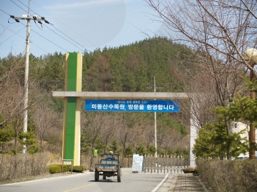 Arboretum Midongsan (미동산수목원)