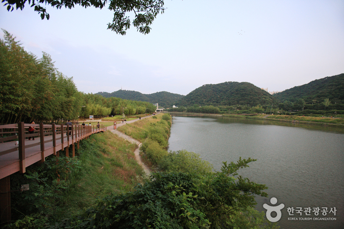 Taehwagang National Garden (태화강 국가정원)