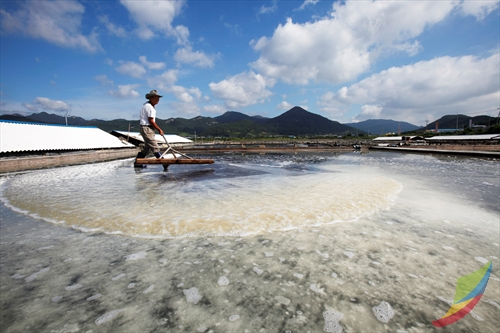 Gomso Salt Field ()