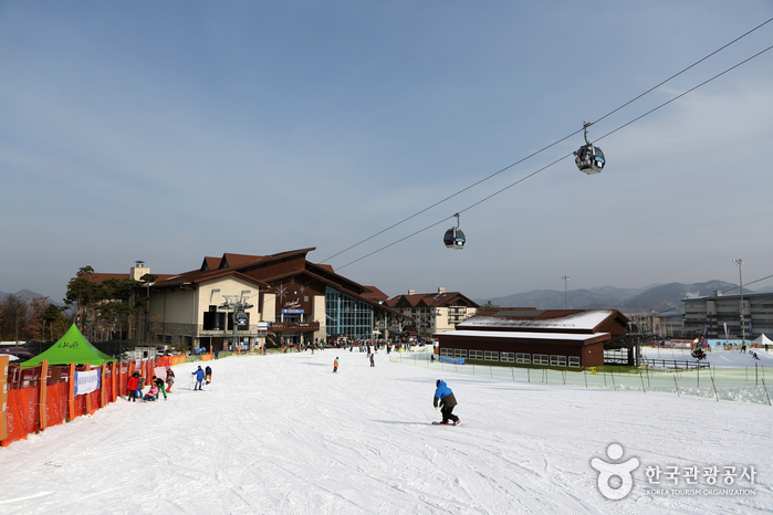 High 1 Ski-Resort (하...