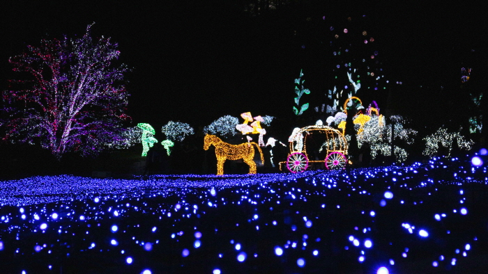 Lighting Festival at The Garden of Morning Calm (아침고요수목원 오색별빛정원전)