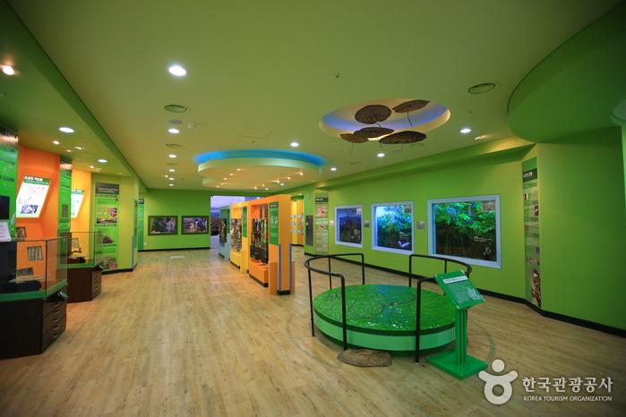 Wetland Eco Center Upo (우포늪생태관)