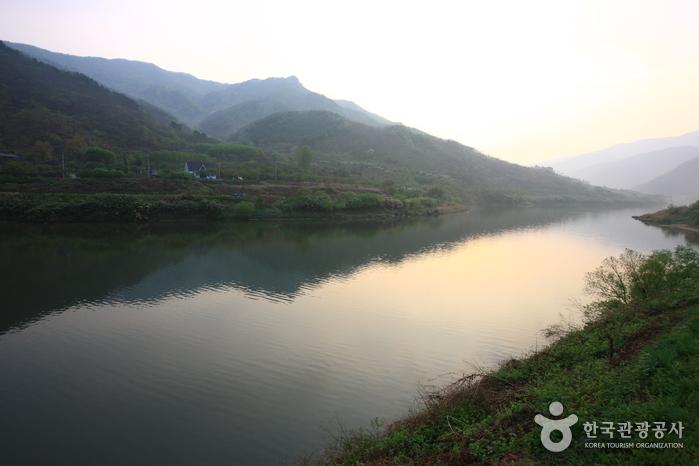 Kirschblütenfestival am Flussufer Seomjingang (섬진강변벚꽃축제)