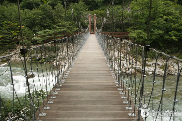 Dutayeon Falls (두타연)