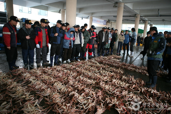 Guryongpo 5-Day Market (구룡포장 (3, 8일))