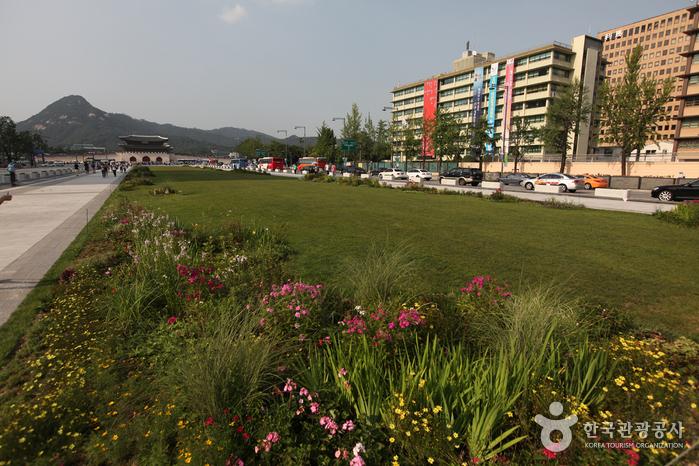 Plaza Gwanghwamun (광화문광장)3