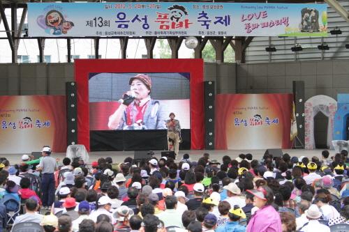 Eumseong Pumba Festival (음성 품바축제)