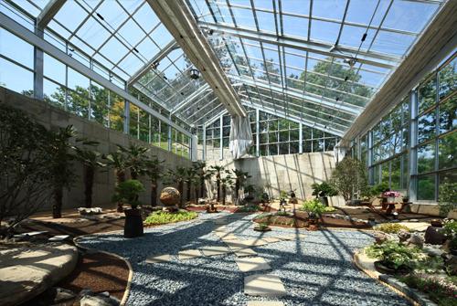 Ботанический сад Soulone (소울원)5