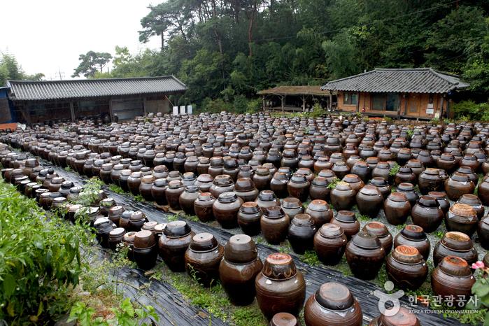 Großes Fest der Namdo-Küche (남도음식문화큰잔치)