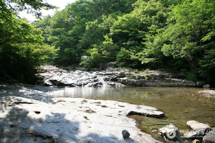 La Forêt Unjangsan (국립 운장산자연휴양림)