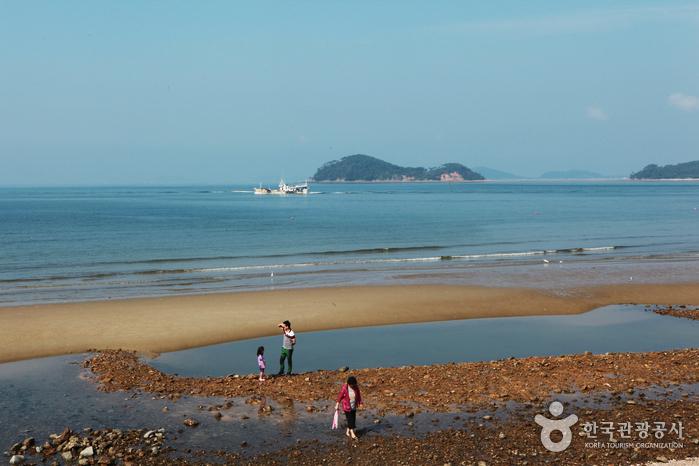 Île Anmyeondo (안면도)