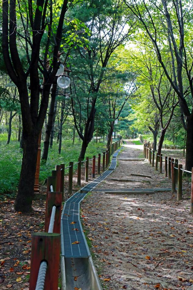 함께 더불어 누빌 수 있는 아름다운 숲길