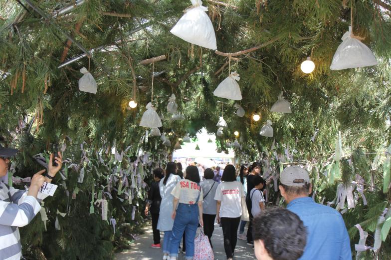 Культурный фестиваль корейских лекарственных трав Яннёнси в Тэгу (대구약령시 한방문화축제)4