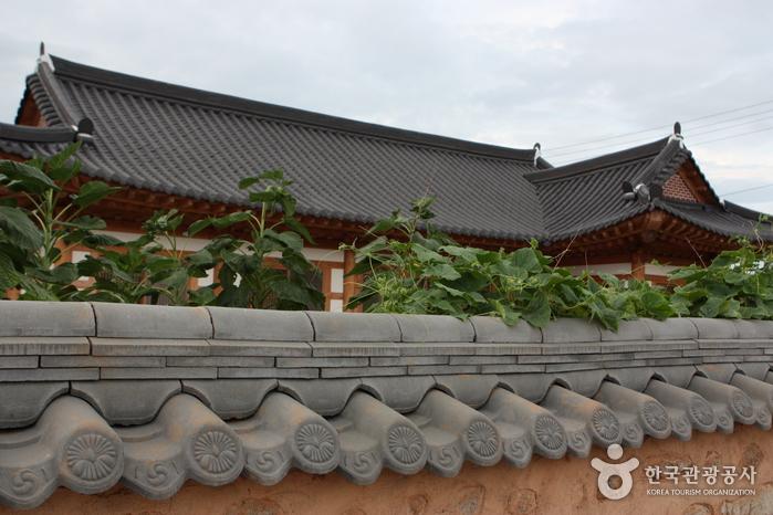 Yeongam Gurim Village (영암 구림마을)