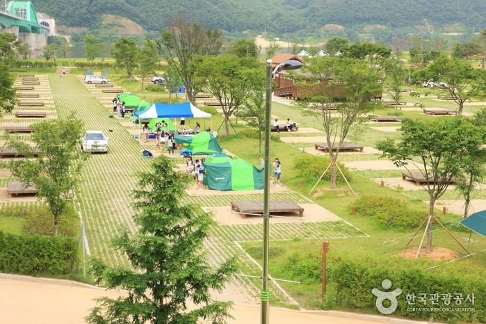 鱉島汽車露營場(자라섬오토캠핑장)