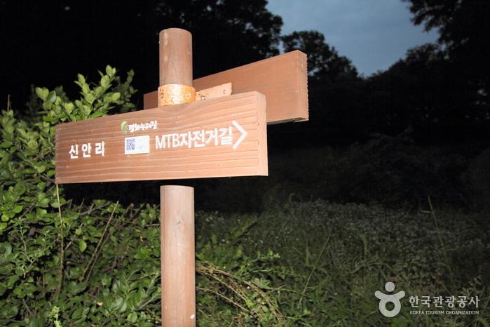평화누리길 1코스 염하강철책길