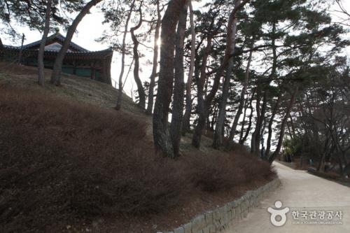 Gangneung Bau-gil Road [Course 5] ([강릉 바우길 5구간] 바다 호숫길)