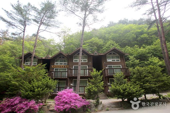방태산자연휴양림의 산림문화휴양관
