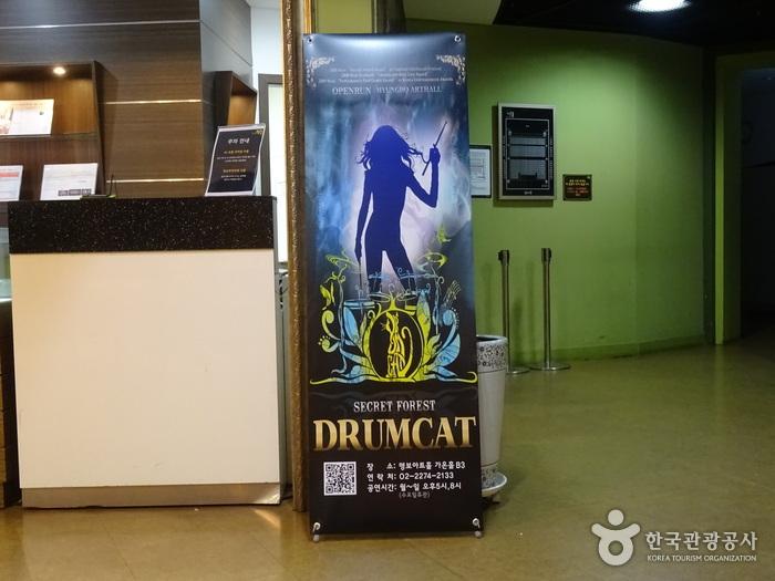 DrumCat Concert (드럼캣 콘서트)
