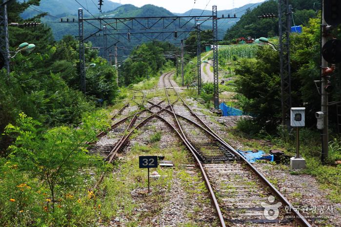 뒤로 가는 기차 스위치백 트레인의 철로