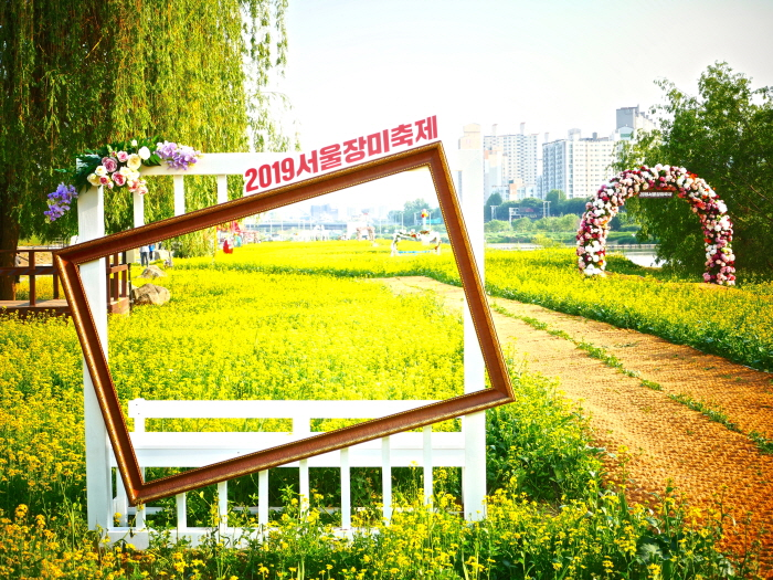 Seoul Rose Festival (서울장미축제)