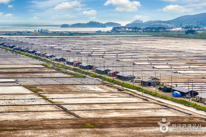 Taepyung Salt Farm (태평염전)