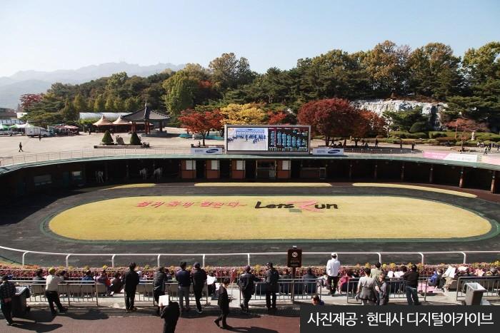 Let's Run Park Seoul (렛츠런파크 서울)