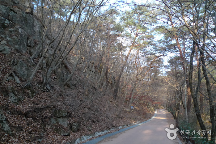Songnisan National Park (Chungcheongbuk-do) (속리산국립공원-충북)