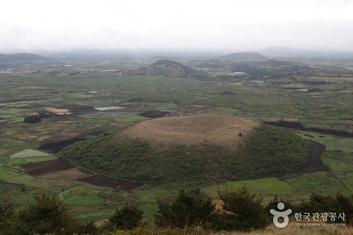 Darangshi Oreum (Wollang Peak) (다랑쉬오름(월랑봉))