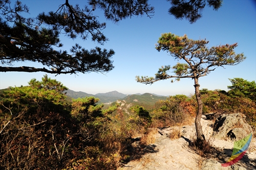 Trash: Seonunsan Mountain (선운산)