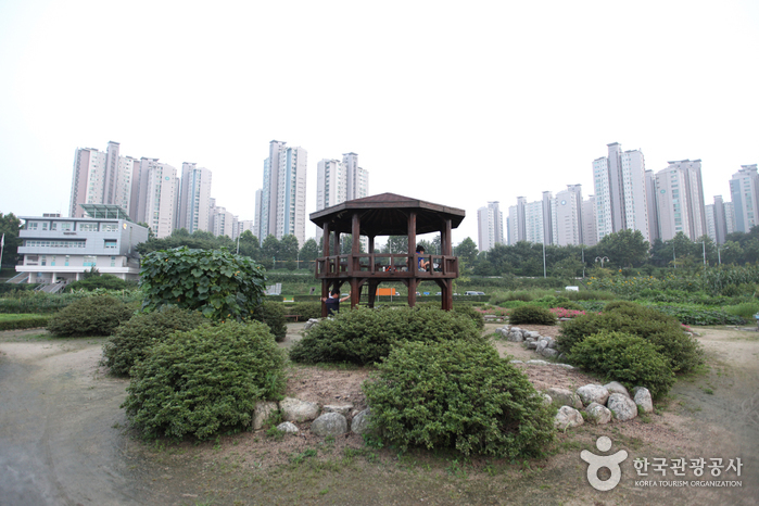 Jamsil Hangang Park (잠실 한강공원)