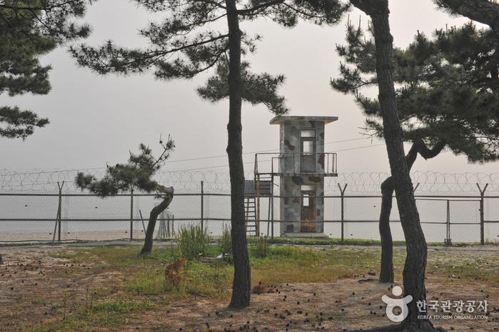 Sacheon Beach (사천해변(사천해수욕장))