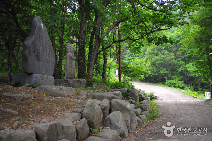 Taebaeksan National Park (태백산 국립공원)