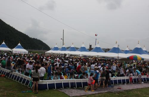 Bonghwa Eun-Uh (Sweet Fish) Festival (봉화 은어축제)