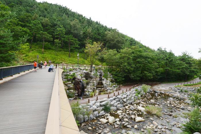 솔숲 잔디광장으로 향하는 다리