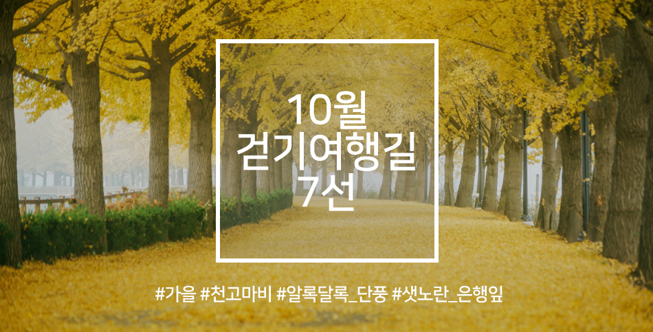 10월 걷기여행길 7선.