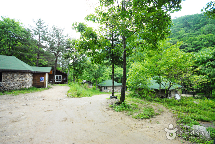 Bosque Recreativo Sambong (삼봉자연휴양림)6