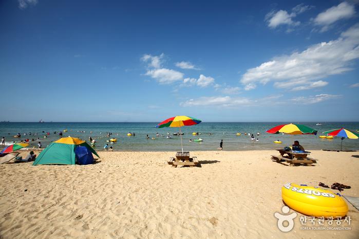 三陟海岸(삼척해변)