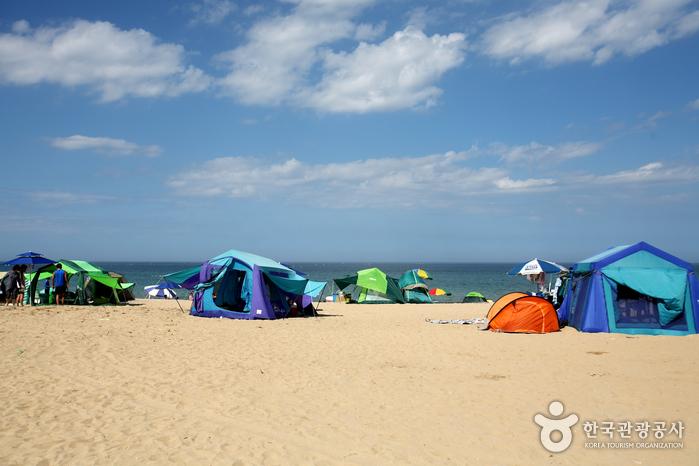 Strand Samcheok (삼척해변)