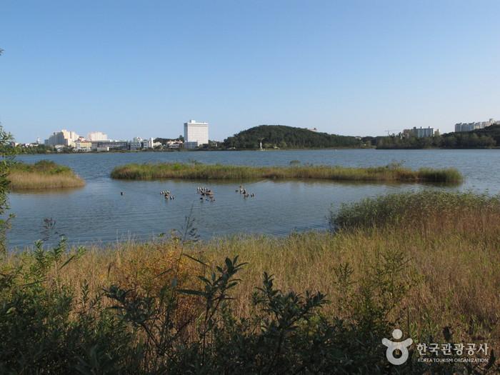 Yeongnangho Lake (영랑호)