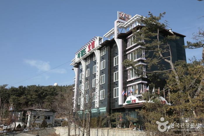Hotel Seaworld (씨월드관광호텔)