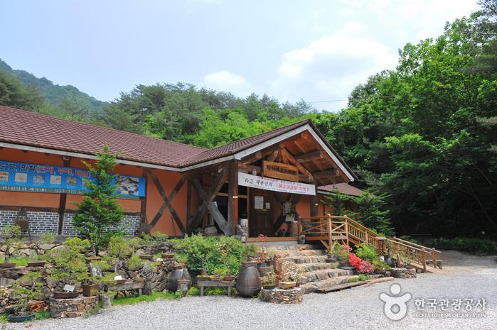 Chosun Minhwa Museum (조선민화박물관)