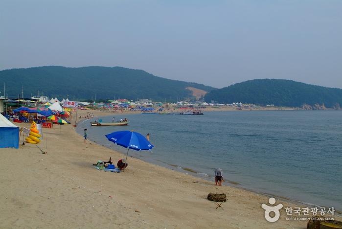 Wangsan Beach (왕산해수욕...